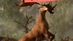 دانستنی های عجیب-حیوانات فوق العاده که نسل شان منقرض شدند