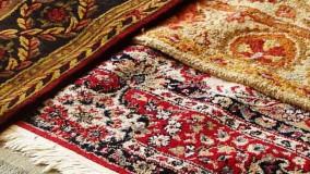 استفاده از روشهای طبیعی و خانگی برای رفع بوی نم از فرش