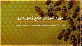 فوت و فن زنبور داری