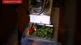 دستگاه اسلایسر میوه و سبزیجات