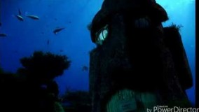 قسمت سوم انیمیشن The SpongeBob Movie-کارتون سینمایی یوتیوب