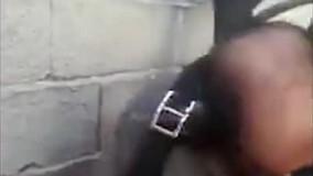 تلاش دیدنی آتشنشانان تبریزی برای نجات ۲ توله سگ