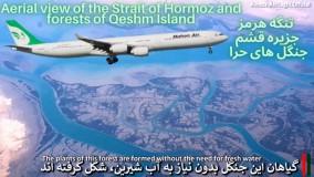 تنگه هرمز و جزیره قشم، جنگل های حرا پرواز دوبی تهران