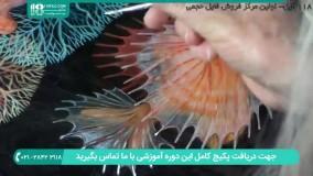 آموزش کشیدن نقاشی ماهی با رزین اپوکسی