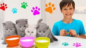 مکس و کتی ؛  بازی مکس و کتی با بچه گربه ها