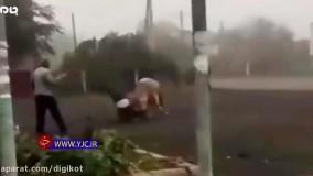 حمله وحشتناک گاو وحشی به یک مرد