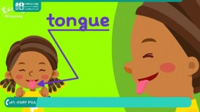 5 روش بسیار ساده برای یادگیری اعضای بدن به زبان انگلیسی
