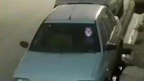 فیلم ضبط شده توسط دوربین مدار بسته ؛ تیر اندازی در خیابان