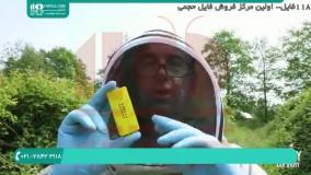 تغذیه زنبور عسل | روش های ادغام کندو