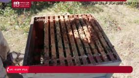 دلیل اهمیت بهترین مناطق استقرار یک زنبورستان ( دوبله فارسی )