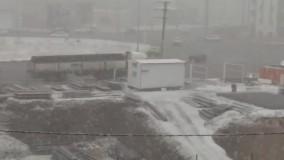 بارش شدید برف زنجان