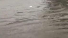 آبگرفتگی و خاموش شدن خودروها ، میدان فرودگاه بوشهر