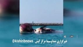 دومین لاشه نهنگ در ساحل کیش