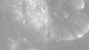 صدای یکی از اقمار مریخ را بشنوید