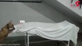 خوردن جسد یک دختر در بیمارستان توسط سگ ولگرد