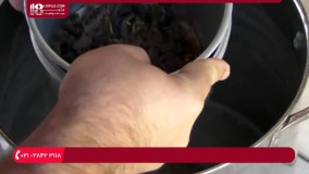 آموزش ایجاد فضایی مناسب برای پرورش سوسک تاریکی