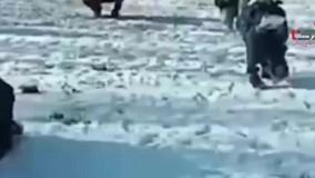 بچه های ابتدایی در سردترین کلاس درس ایران / معلم و دانش آموزان روی برف نشستند
