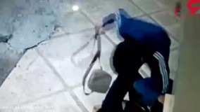خفتگیری وحشتناک در خیابان تهران پارس