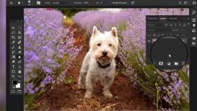 آشنایی با ابزار های فتوشاپ blur tool & sharpen tool & smudge tool
