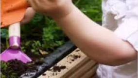 باغبانی با کودکان جهت افزایش صبر