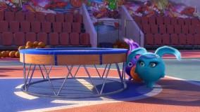 انیمیشن شاد کودکانه خرگوش های خورشیدی - قسمت 65 - Sunny Bunnies