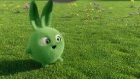 انیمیشن شاد کودکانه خرگوش های خورشیدی - قسمت 72 - Sunny Bunnies