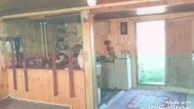 اجاره کلبه جنگلی در شمال