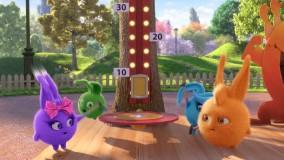 انیمیشن شاد کودکانه خرگوش های خورشیدی - قسمت 76 - Sunny Bunnies