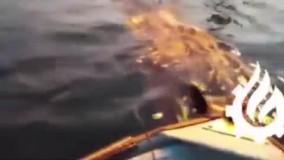 مهمان ناخوانده سکوی نفتی فروزان خلیج فارس