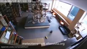 واکنش سریع حیوانات به زلزله بزرگ