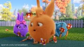 انیمیشن شاد کودکانه خرگوش های خورشیدی - قسمت 110- Sunny Bunnie