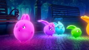 انیمیشن شاد کودکانه خرگوش های خورشیدی - قسمت 100- Sunny Bunnie