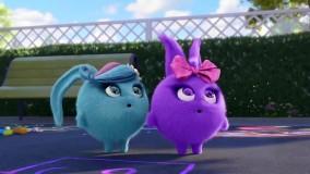 انیمیشن شاد کودکانه خرگوش های خورشیدی - قسمت 122- Sunny Bunnie