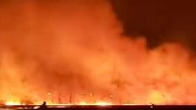 جزئیات آتش سوزی بوستان ولایت تهران چیست؟