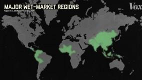 چرا  بیماریهای جدید  از چین نشأت می گیرند؟