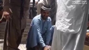 زندهگیری یک تمساح بزرگ از درون خانه روستاییان چابهار