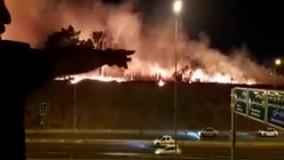 روایت شاهدان از  آتش سوزی در پارک چیتگر