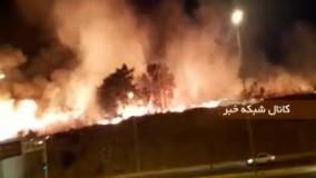 آتش سوزی در پارک چیتگر تهران