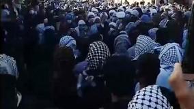 تیرباران وحشتناک در مراسم عزاداری شیخ شادگان