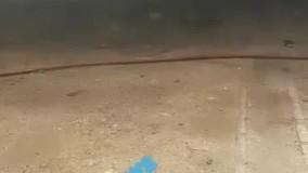 اتشسوزی در بوشهر