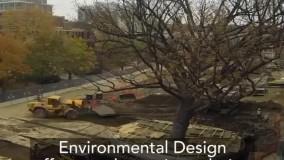 شیوه متفاوت برای جلوگیری از تخریب محیط زیست