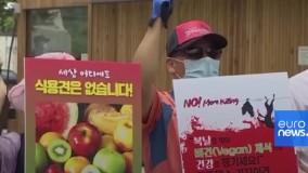 جشنواره سگخواری در کره جنوبی؛ معترضان دعوت به گیاهخواری کردند