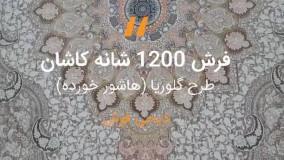 فرش کاشان طرح گلوریا هاشور خورده – ۱۲۰۰ شانه گل برجسته صدفی کد ۲۲۱۲۶۹