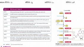 حل تشریحی سوالات زیست شناسی سلولی کارشناسی ارشد مجموعه  علوم آزمایشگاهی 2