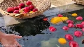 طرز تهیه کاستر میوه به سبک هندی ها با حجم زیاد