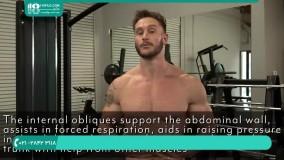 آموزش بدنسازی و 6 تکه کردن شکم با کش