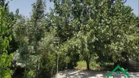 باغ ویلا اکازیون شهرکی در میدان جهاد شهریار