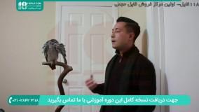 آموزش حرف زدن به طوطی کاسکو