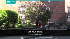 حالات ساده افعال در زبان آلمانی