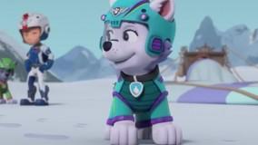 انیمیشن سگهای نگهبان : نجات تراویس